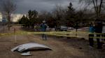 شركات طيران تعلق استخدام طائرات بوينغ 777 بعد حادث كولورادو