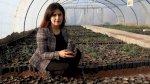 كردستان: مليون شجرة لمواجهة التغير المناخي