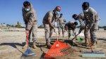 إسرائيل تستبعد تسبب سفينة يونانية بالتسرّب النفطي