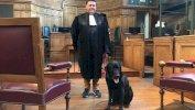 لول هو أول كلب في أوروبا يستعين به القضاء في مساعدة ضحايا الجرائم