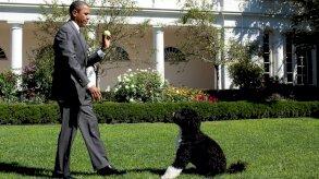 عائلة الرئيس الأميركي السابق باراك أوباما تودّع الكلب