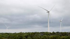 تحقيق الحياد الكربوني يحتّم وقف مشاريع التنقيب الجديدة عن النفط والغاز