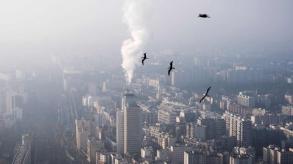 الوكالة الدولية للطاقة تدعو إلى دعم الدول النامية للحد من التغير المناخي