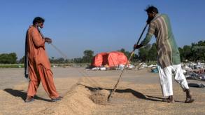 خلاف جديد بين الهند وباكستان محوره أرز البسمتي