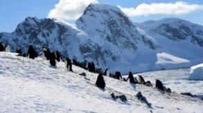 فرنسا تجمع الدول الموقعة لمعاهدة القطب الجنوبي