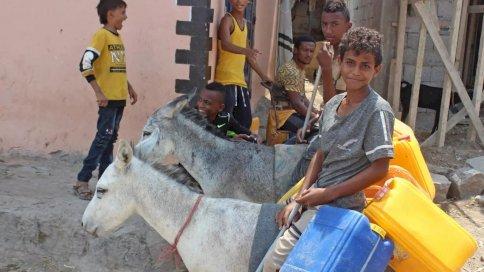 شبان يمنيون يحملون عبوات بلاستيكية على حمير في عدن بتاريخ 16 سبتمبر 2020