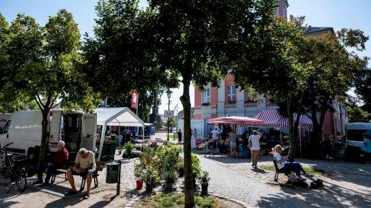 قاعة المدينة (Rathaus) وساحة السوق في تمبلن. تم التقاطها في 10 أيلول/سبتمبر 2021، ألمانيا.