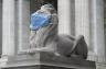 فورتيتود، أحد الأسدين الرخاميين الرابضين أمام مكتبة نيويورك العامة، وقد وضعت على وجهه كمامة